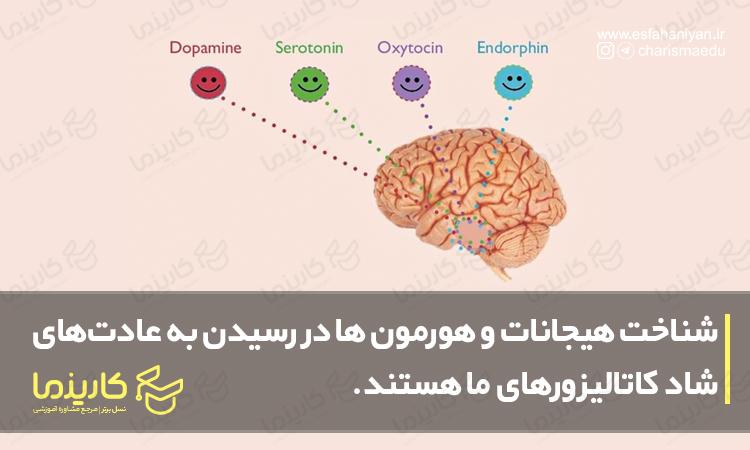 شناخت هیجانات و هورمون ها در رسیدن به عادت های شاد کاتالیزور هستند